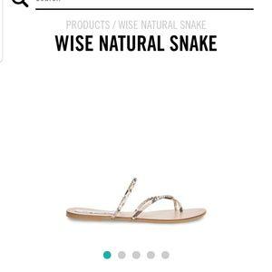 """Steve Madden """"Wise"""" snake sandals"""